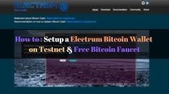 How to Setup a Electrum Bitcoin Wallet on Testnet | Free Bitcoin Faucet | PIAIC