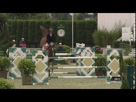 Comdero I van beek Z (approved stallion by comme il faut) @Knokkehippique