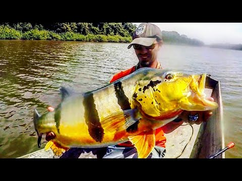 Fishing A HIDDEN LAGOON For GIANT PEACOCK BASS!!