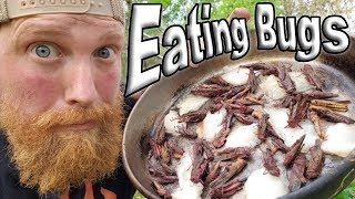 Catch and Cook Grasshoppers Fried In Raccoon Fat / Day 24 Of 30 Day Survival Challenge  Texas