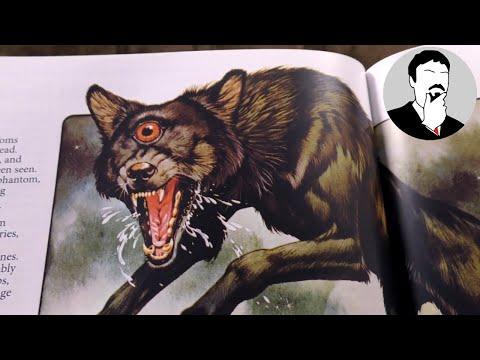 Some Spooky Books - Usborne Etc | Ashens