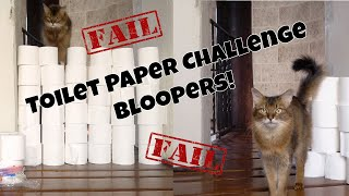 TOILET PAPER CHALLENGE FAIL: Funny Bloopers from Summer's Cat Video