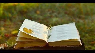 Стихи про Любовь. Другая. Читает Автор Александр Лесь.