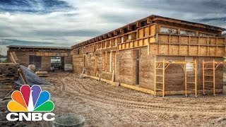 The Cannabis Sativa Plant Isn't Just For Smoking. You Can Build Your Home With Hemp | CNBC
