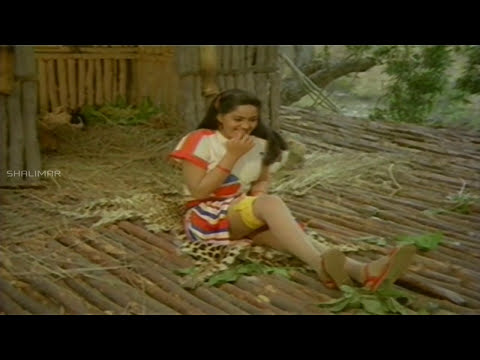 Adavi Donga Movie  Chiranjeevi Saves Radha