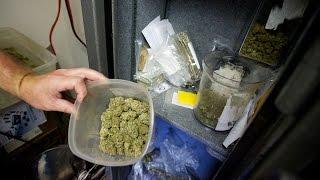 Police Raid Vancouver Cannabis Distributor