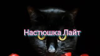 Милые Котята Фотографии Кошек  Кошки  МИЛОТА!!!