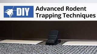 Advanced Rodent Trapping Techniques Techniques | Rodent Control Tips