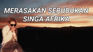 AQUILA SAFARI TOUR | AUREL HERMANSYAH HAMPIR DISERUDUK SINGA #AUREL'SVLOG
