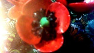 Поделки из ракушек  Цветы мака