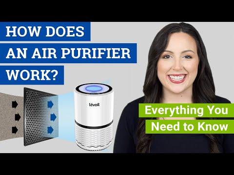 How Does an Air Purifier Work? (Do Air Cleaners Really Work for Dust, Mold and Allergies?)