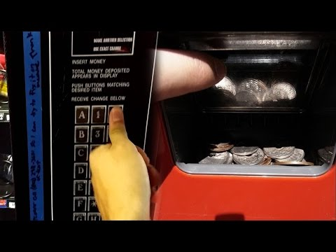 Top 5 Vending Machine LIFE HACKS 2017 (FREE Money, Coca Cola, Codes & FOODS)