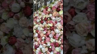 Цветочная стена Аренда Самара(Цветочная стена из цветов Премиум класса. Размер 2.4/2.5м различные цветовые гаммы! Аренда в Самаре, Тольятти..., 2016-10-12T09:41:47.000Z)