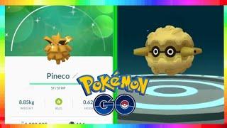 NEW SHINY POKEMON HUNT in Pokemon Go! SHINY PINECO RESEARCH