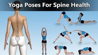 7 Best Yoga Poses for Spine Health