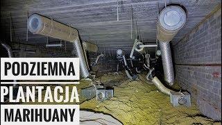 Podziemna Plantacja Marihuany |Urbex #171|