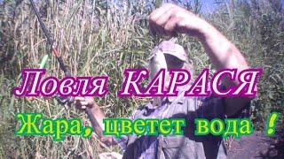 Рыбалка на утренней зорьке Ловля карася на удочку Супер тесто для рыбалки на карася