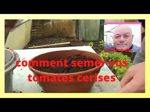 Que faire au jardin au mois de fevrier semer les tomates cerises youtube - Que faire au jardin en fevrier ...
