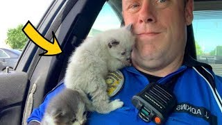Police Officer Saves Two Kittens and They Could Not Stop Cuddling With Him