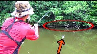 魚が隠れそうなジャングルの影から元気な魚をスキッピングで鬼フッキン...