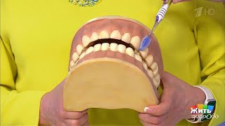 Жить здорово! Как выбрать зубную щетку?(29.09.2017)