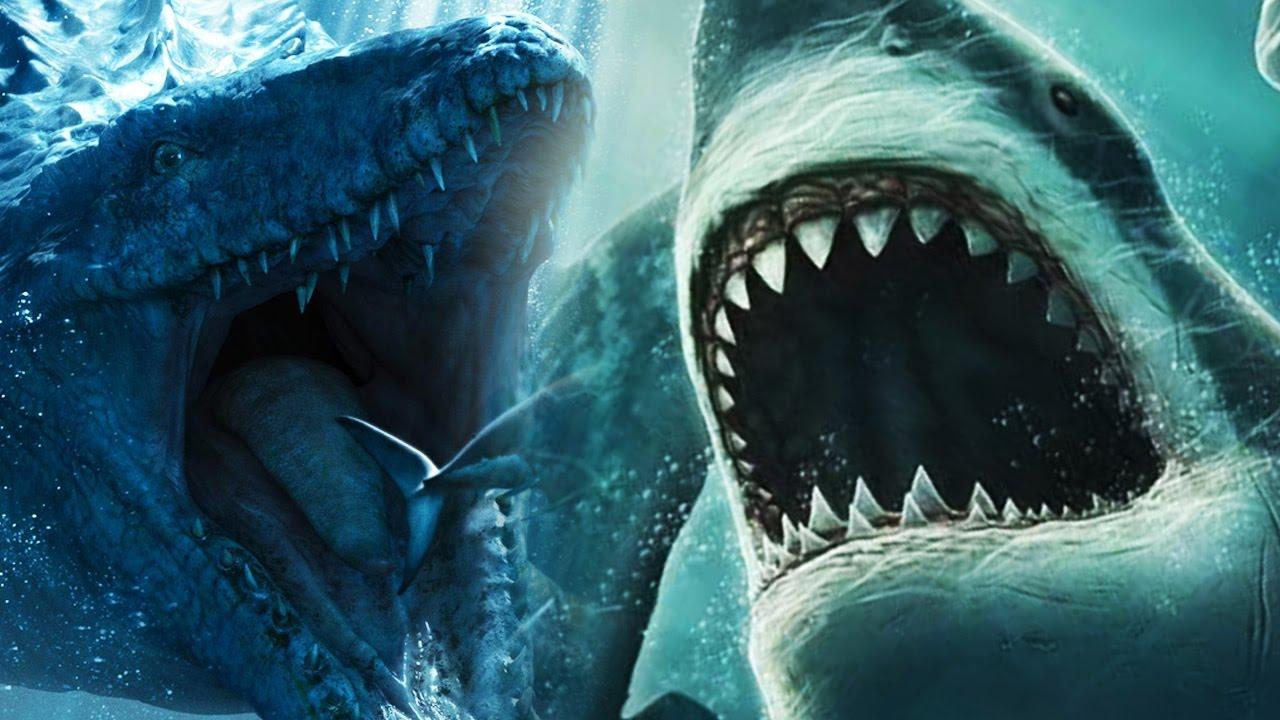 Biggest Megalodon Shark Facts