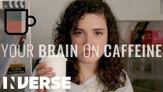 Your Brain On Caffeine | Inverse