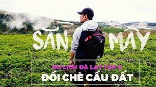Cau Dat tea hill in Da Lat   Episode 5