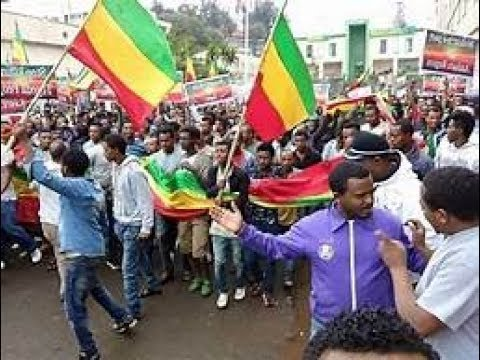 Amharic speaking Tigryans said they will make sure that unrest in Tigray will begin