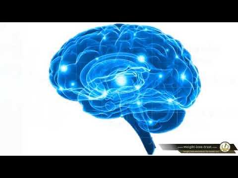 piracetol-cognitive-function-enhancer-reviews