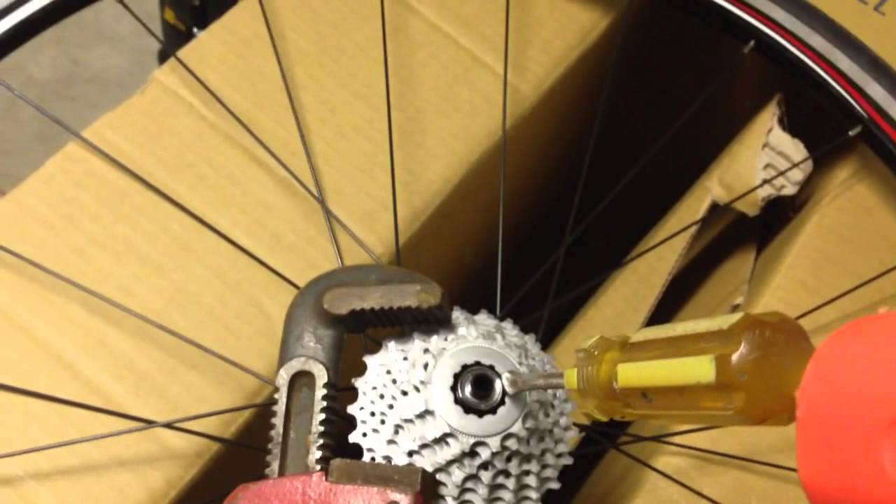 How To Remove Bike Cassette Without Special Tools