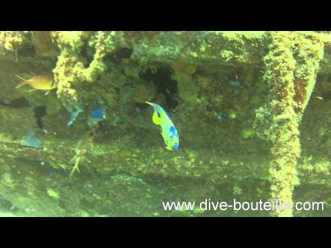 Plongée sur le Lynndy dans la Baie des Saintes - Guadeloupe