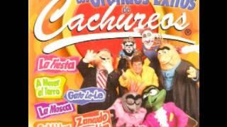Los Grandes Exitos De Cachureos - Canta Cachureos