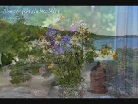 Ingalill Rossvald Och Harry Brandelius - Sju Ensamma Kvällar