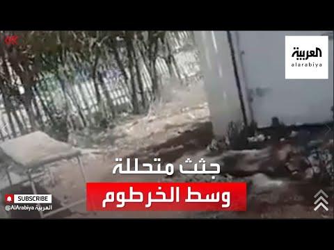 عشرات الجثث البشرية المتحللة وسط حي سكني بالخرطوم.. والأهالي يستغيثون بسبب الرائحة الكريهة  - نشر قبل 2 ساعة