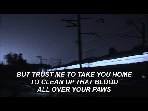 putting the dog to sleep - the antlers | lyrics