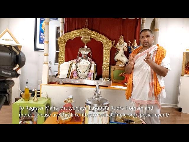 Maha Mrutyunjaya Pasupata Sahita Aruna Homam