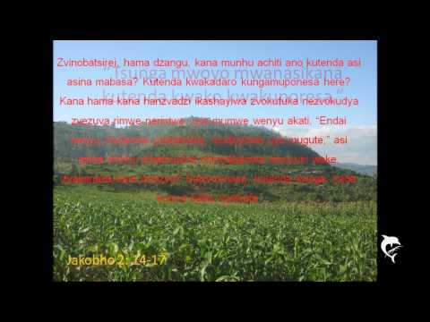 Blessing Shumba - Mabasa