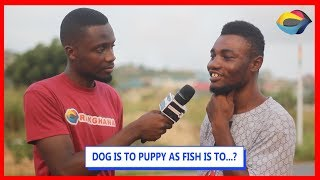 DOG is to PUPPY as FISH is to...? | Street Quiz | Funny Videos | Funny African Videos |
