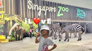 Video one fun day @Singapore zoo download MP3, 3GP, MP4, WEBM, AVI, FLV Juni 2018