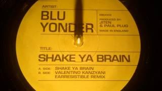Blu Yonder - Shake ya brain ( Valentino Kanzyani earresistible remix )