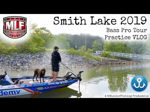 I take my dog fishing for $100,000! Major League Fishing Alabama Practice