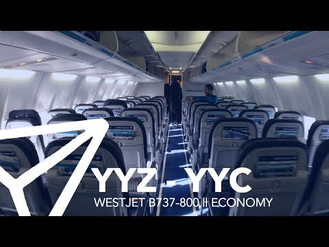 FLIGHT REPORT || WestJet - B737-800 (738) - Economy - Toronto to Calgary