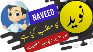 Naveed name meaning in urdu and lucky number   Islamic Boy Name   Ali Bhai