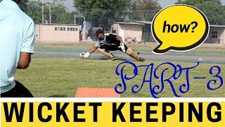 Expert wicket keeping tips | wicket keeping Drills | wicket keeping position | STRENGTH???