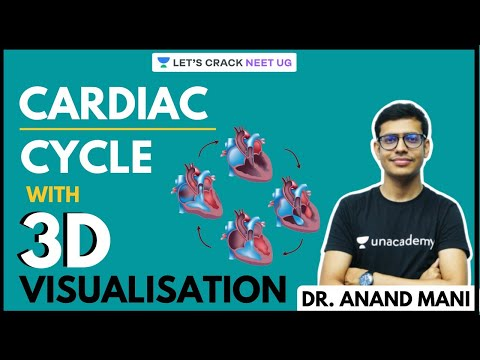 understand-cardiac-cycle-with-3d-visualisation-|-neet-biology-|-neet-ug-|-dr.-anand-mani