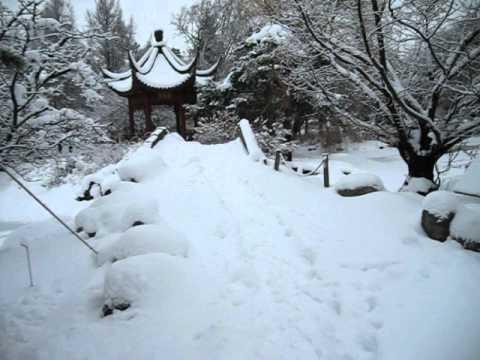 Jardin de Chine sous la neige 18 décembre