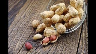 Арахис. Польза и свойства арахиса