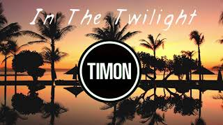 TIMON - In The Twilight