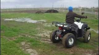 Kuba 200cc Atv Off Road
